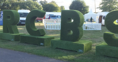 Berkshire Show cancelled
